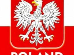 Легальное трудоустройство в Польше для Украинских граждан