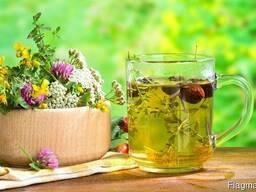 Лекарственные травы (2)