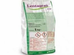 Lentagran45 WG (Лентагран) 1 кг - гербицид для лука