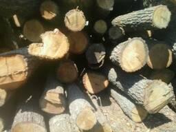 Лес круглый дрова Береза