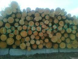 Лесоматериалы круглые-сосна (пиловочник) ГОСТ 9463-88