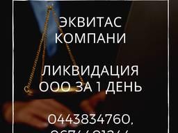 Ликвидация ООО, ФЛП в Киеве