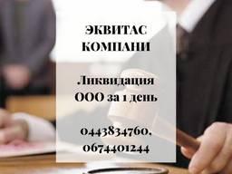 Ліквідація ТОВ за 1 день Одеса.