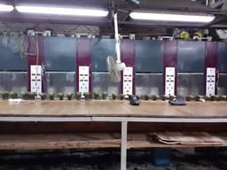Лінія для виробництва взуття з ЕВА