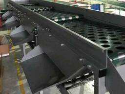 Линия переработки улиток, ленточный конвейер, калибратор