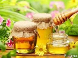 Липовый, лесной, гречишный, кориандровый мёд, Пыльца, перга