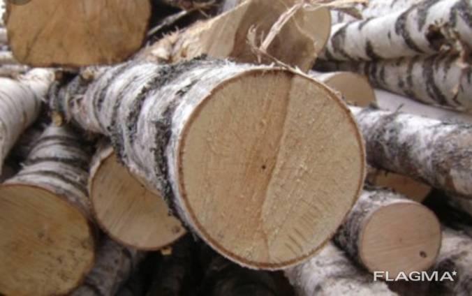 Ліс круглий береза