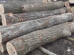 Лісоматеріали круглі