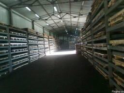 Нержавеющий лист 12х1000(1250)х2000(2500) AISI 304 (пищевой)