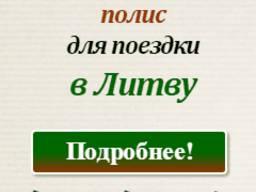 Литовская страховка на год для рабочей визы
