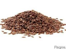 Льону насіння, Льна семена