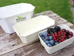 Лотки пинетки бумажные для ягод, фруктов, овощей 500г