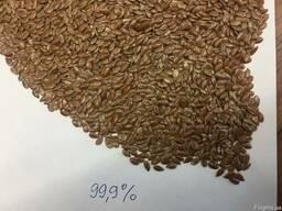 Лён, семена льна, насіння льону.