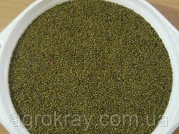 Люцерна Банат семена магниченная (очищенная) мешок 25 кг 1р