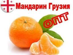 Мандарин Грузия урожай 2018-2019 г.