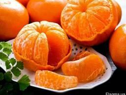 Мандарины, апельсины, лимоны___ ОПТ не дорого__в Турции