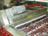 Машина для удаления косточек из вишни, сливы, абрикоса 2600 - фото 2