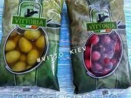 Маслины фиолетовые гиганты Vittoria