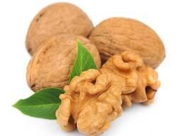 Масло грецкого ореха (Walnut oil)