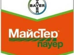 Майстер пауер