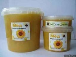 мед подсолнечный мед подсолнечника