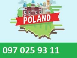 Медицинская страховка туристическая, для визы в Польшу, Чехи