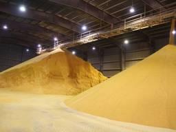 Механізований зерносклад, ангар, склад для зерна