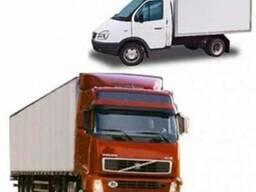 Международные и внутренние транспортные услуги
