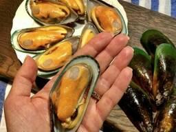 Мідія в мушлі вар-мор 20-34 НОВА Зеландія