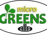 Микрогрин Мікрогрін Микрозелень Микрозелень Паростки - фото 1