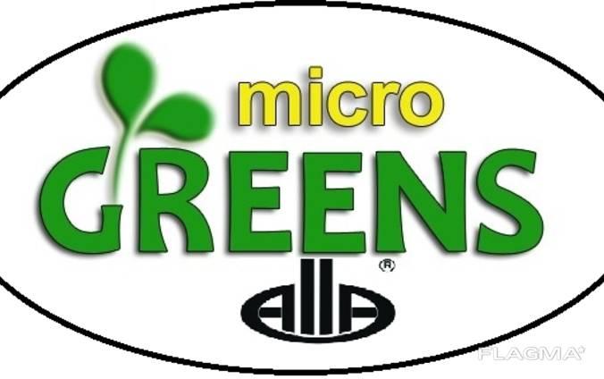 Микрогрин Мікрогрін Микрозелень Микрозелень Паростки