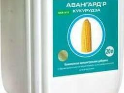 Микроудобрения Авангард Кукуруза 80 грн /л
