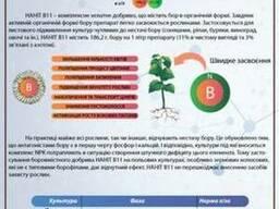 Микроудобрения Нанит B11 (Бор) hectare-agro. zakupka. com
