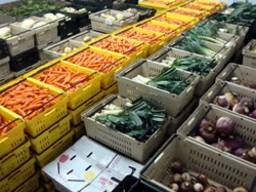 Монтаж холодильных камер для хранения заморозки фруктов