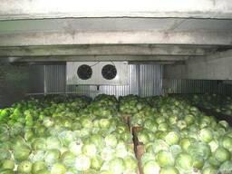 Монтаж овощехранилищ. Холодильное оборудование.