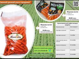 Морковь мытая фасованная 1кг и 18 кг производства РБ