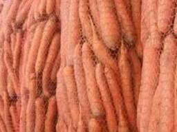 Морковь на закладку