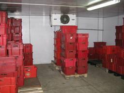 Морозильные установки, холодильные камеры шок заморозки мяса