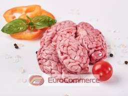 Мозок свинний