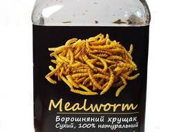 """Мучной червь сухой """"Mealworm"""" тм Буся. Корм для рептилий, птиц, грызунов, рыб. 600мл/100г"""