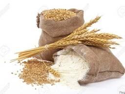 Мука пшеничная. Отруби.
