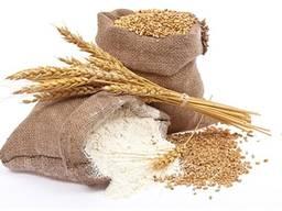 Мука пшеничная в мешках по 50кг с доставкой