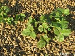 Мульча органическая для защиты почв