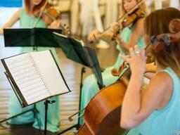 Музика на весільну церемонію.