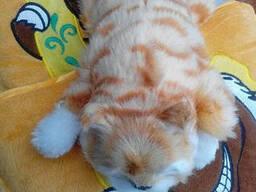 "Мягкая игрушка-Кот ""Kachayuschyysya and Laughing Cat"
