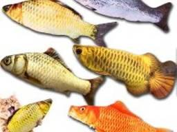 Мягкая игрушка рыба в ассортименте 20см, 40см, для кошек кота, Зоотовары