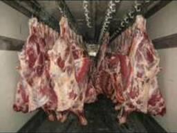 Мясо - фото 5