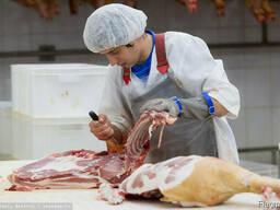 Мясо обваленное свинина, говядина, курица. Полутуши и туши.
