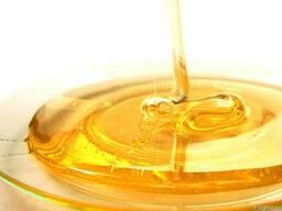 Куплю оптом Мёд