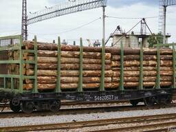Надаємо послуги по відправці та приймання лісоматеріалів за